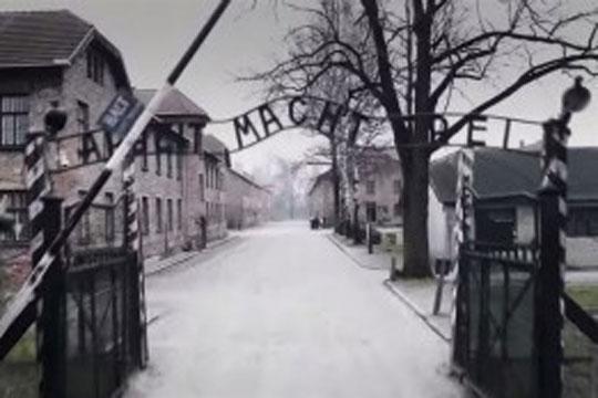 """""""Holokaustoari buruzko heziketaren 13 zutabe nagusiak"""""""