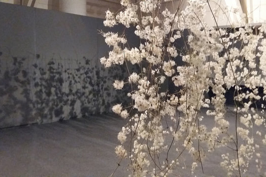 """Murgilketak. Viajes de Jung"", Pilar Soberon-en erakusketa"